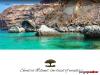 Al-Hamed Tourism Socotra