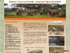 kenya safari, mombasa safaris,tsavo safaris, masai