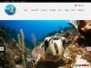 Eco Dive and Trek