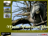 Greater Vancouver Parks