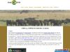 Shoebill Uganda Safaris