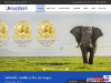 Luxury Safaris in Tanzania Kearsleys