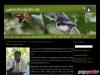 Gambia Birdguide