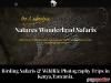 Birding Tours & Wildlife Photography Safaris Kenya