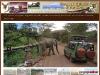 Steenboksafaris