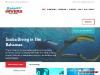 Bahama Divers