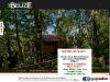 Belize Tree Houses