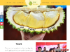 Year of the Durian