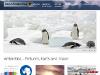 Cool Antarctica