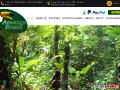 Amazon Brazil Jungle Tours