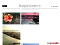 Budget Wanderer