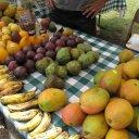 Loads of Tropical Fruit