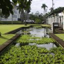 One of the many parks in Hilo, (big island)