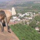 Hampi-Karnataka-India