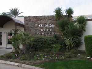 Oasis-Date-Gardens