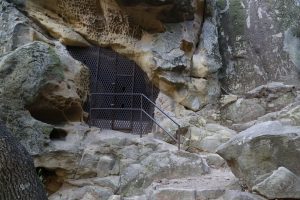 chumash-painted-cave-santa-barbara-4
