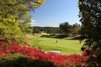Santa Barbara, CA – Golf Courses