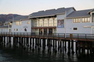 sea-center
