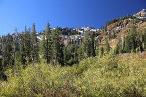 Alpine-Meadows (1)