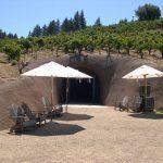 Bella-Winery
