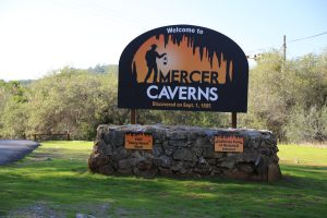 mercer-caverns-2