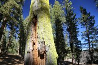 Mt. Lassen, CA – More Info