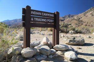 indian-canyons-palm-springs-1