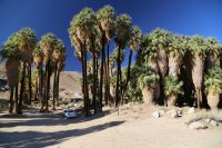 Palm Springs, CA – Hikes