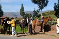 Cuzco, Peru – Other Activities