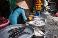 Saigon, Vietnam – More Information