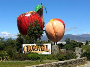 Cromwell-New-Zealand1