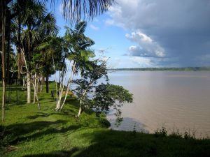 Eco-Vagabond-Amazon