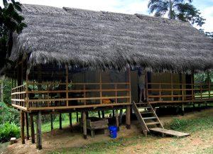 Eco-Vagabond-Amazon-River