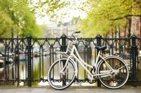 Let your Vacation Bloom in Amsterdam!
