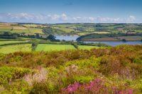 A Week in Sunny Devon
