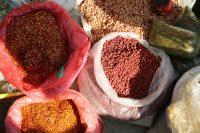 Burma: Poverty, Government Greed & Human Sweetness Part II