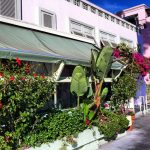 ivy-at-the-shore-santa-monica (1)