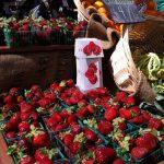 santa-monica-farmers-market (2)