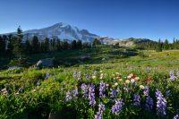 Mt. Rainier, WA – Equipment List