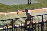 Australia Zoo, Crocodile Hunter AU – September 2006