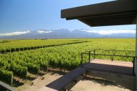 Mendoza, Argentina – Wineries