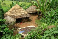 BorderJumping Ethiopia! One farmer teaches by example…
