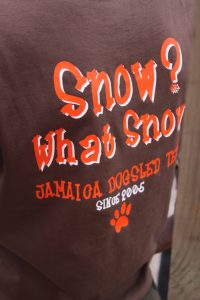 jamaica-snow