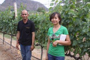 GranMonte-Vineyard-Manager