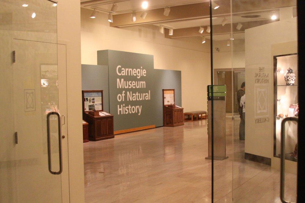 carnegie-museum-natural-history