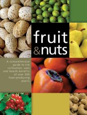 fruits-and-nuts