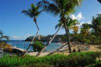 bolongo bay, trees, beach