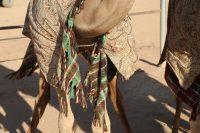 Beware of Camels and Mysterious Shisha
