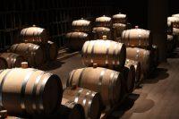 Driving through Tuscany & Antinori Winery Visit