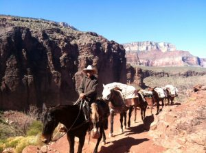 grand-canyon (1)